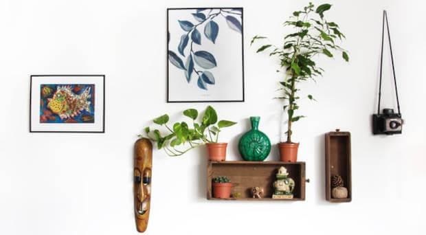 slike-polica-ukrasi-biljke-na-zidu
